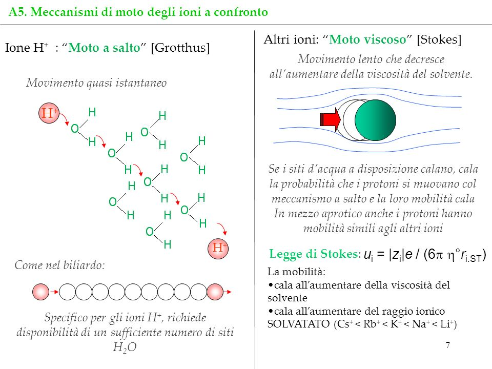 H+ ui = |zi|e / (6 °ri.ST) Altri ioni: Moto viscoso [Stokes]